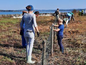 Zaključna dela na prodnatem otoku 2. Temeljito smo pregledali tudi ograjo. Foto: Urša Gajšek