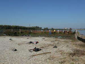 Ekipa med puljenjem zarasti na prodnatem otoku 1. Foto: Urša Gajšek